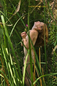 a nude woman holding a flower and behind a bunch of grass illustrating boudoir photography outdoors